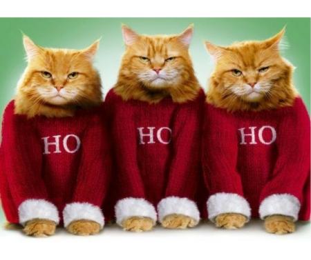 ho-ho-ho-blog