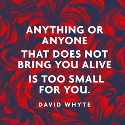 david-whyte-quote